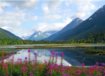 AlaskaFI